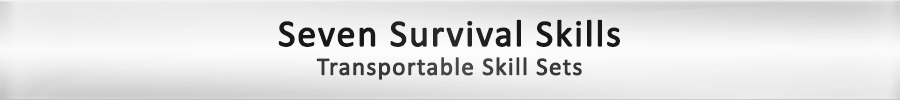 framework-final-survival